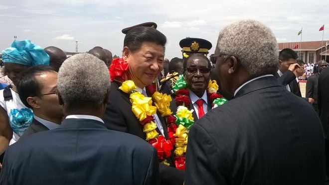 Xi Jinping  and Mugabe